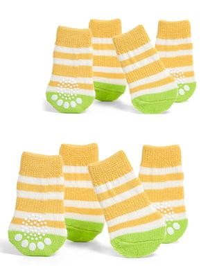 Шкарпетки в смужку для собак маленьких порід   5775455