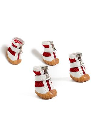 Кросівки біло-червоні для собак мініатюрних порід   5775600