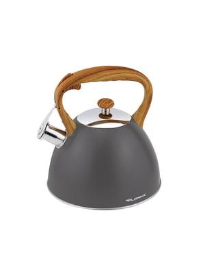 Чайник (2,5 л) | 5782325