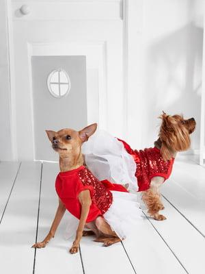 Сукня для собак   5836871
