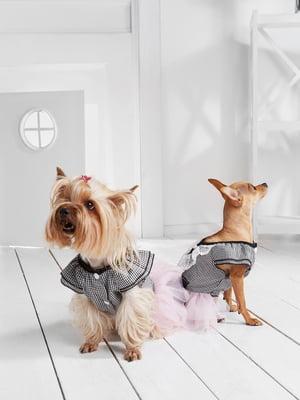Сукня для собак   5836878