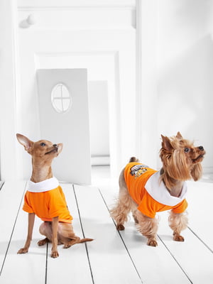 Футболка для собак   5836895