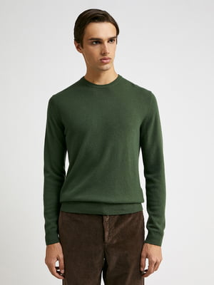 Джемпер зелений   5838752