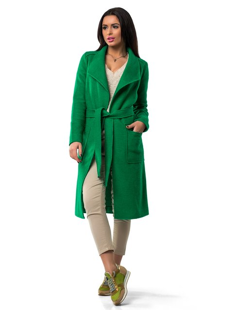 /palto-zelenoe-icon-1962159