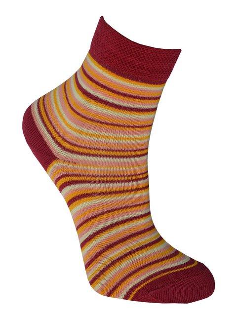 Шкарпетки в смужку Misyurenko 3630538