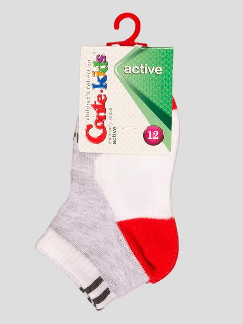Шкарпетки біло-сірі Conte Kids 4366724
