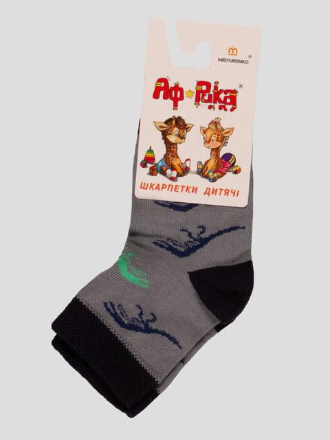 Шкарпетки сірі Misyurenko 3630544