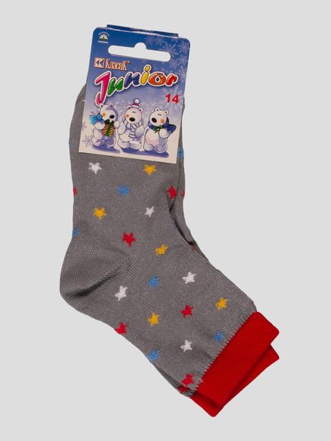 Шкарпетки сірі Классик 3654060