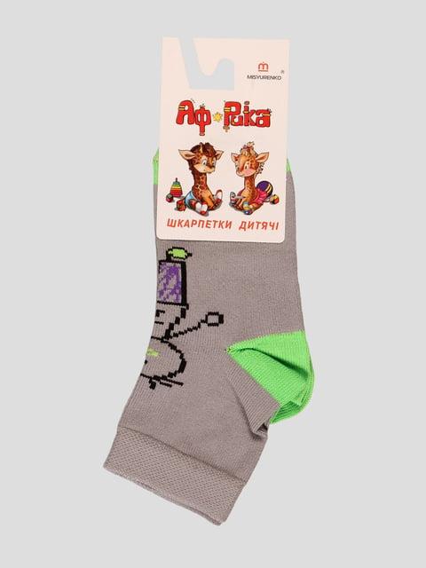 Шкарпетки сірі Misyurenko 3630559