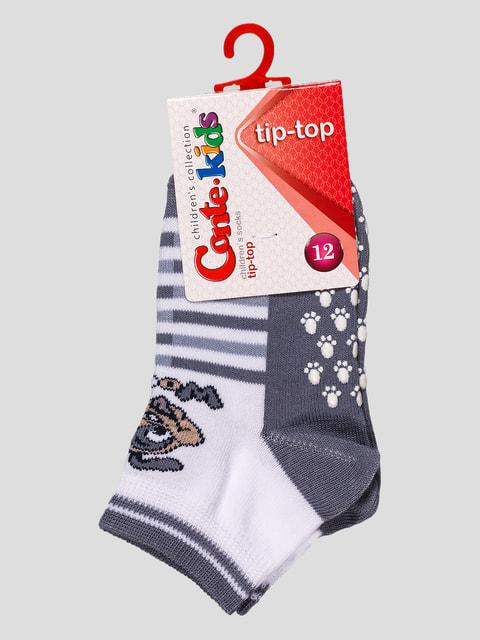 Шкарпетки сірі Conte Kids 4663665